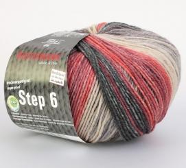 Step 150g 6-fädig Irish Color Sockenwolle Austermann 678 edinburgh