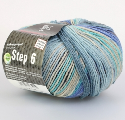 Step 150g 6-fädig Irish Color Sockenwolle Austermann 682 loch ness
