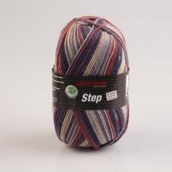 Step 4-fädig Color 100g Sockenwolle Austermann 295 droghda