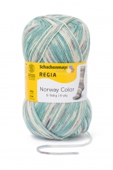 Regia 150g-Knäuel 6-fädig Color Sockenwolle 02787 voss color