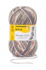 Regia 150g-Knäuel 6-fädig Color Sockenwolle 02791 trondheim colo
