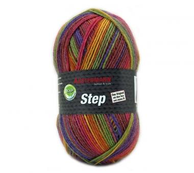 Step 4-fädig Color 100g Sockenwolle Austermann 219 ennis
