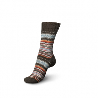 Regia Pairfect Design Line Sockenwolle 09135 fall night color