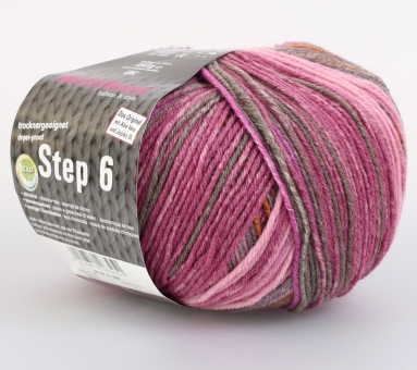 Step 150g 6-fädig Irish Color Sockenwolle Austermann 679 inverness