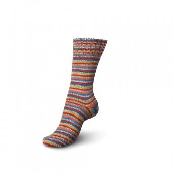 Regia 4-fädig Color Sockenwolle 50g 5478 brasil salvador