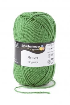Bravo Schachenmayr 8191 farn