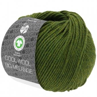 Cool Wool Big Melange Lana Grossa 213 Oliv meliert
