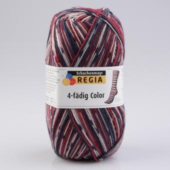 Regia 100g 4-fädig Color 07708 skimütze color