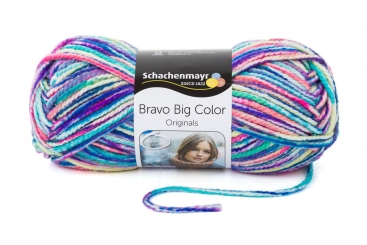 Bravo Big Color Wolle Schachenmayr 00128 labradit color