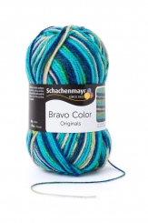 Bravo Color Wolle Schachenmayr 2119 fresh color