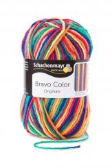 Bravo Color Wolle Schachenmayr 0090 nizza color